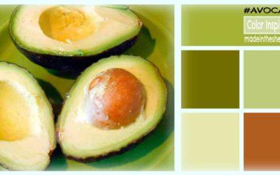 color inspiration: avocado madness
