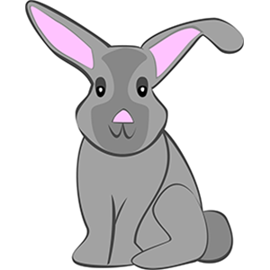 illustration bunny