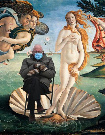botticelli the birth of venus with bernie